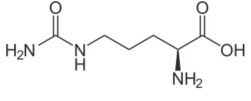 Citrulline Chemical Structure